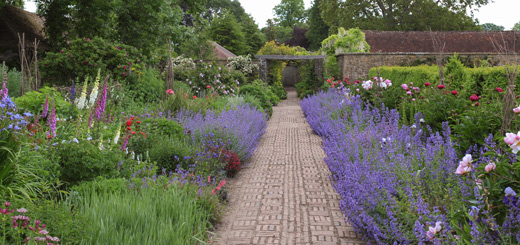 herbaceous-borders