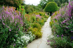 herbaceous-borders2