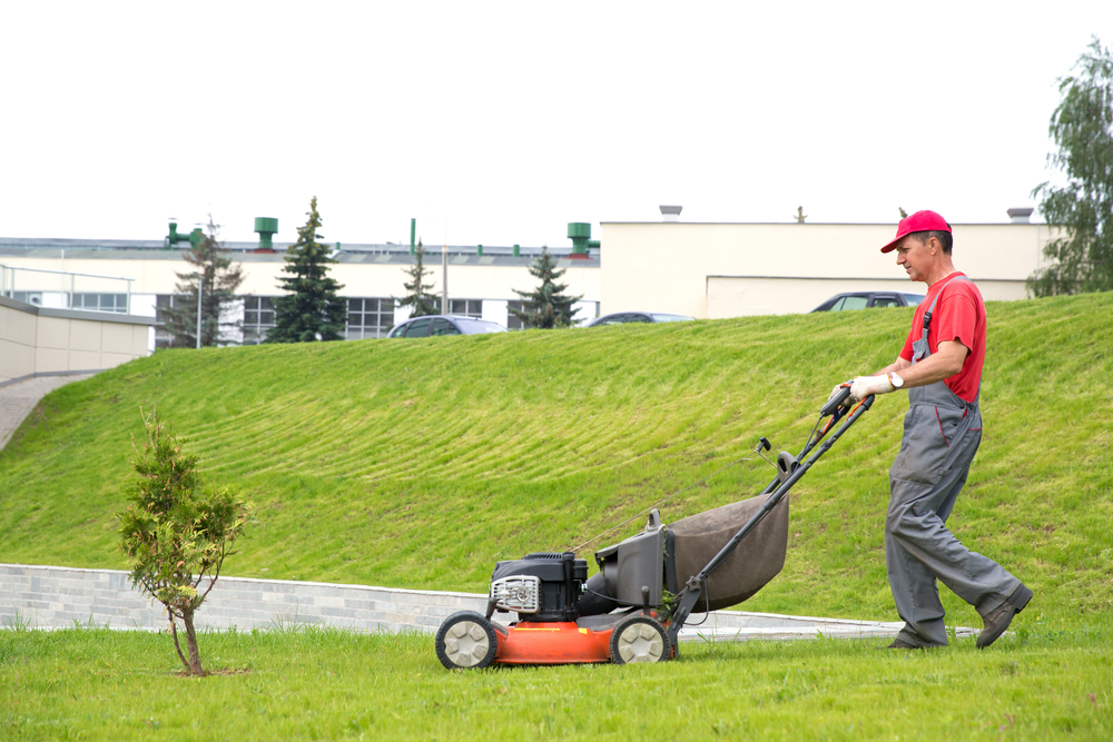 Advantages of hiring professional lawn mowing services for Lawn mowing and gardening services